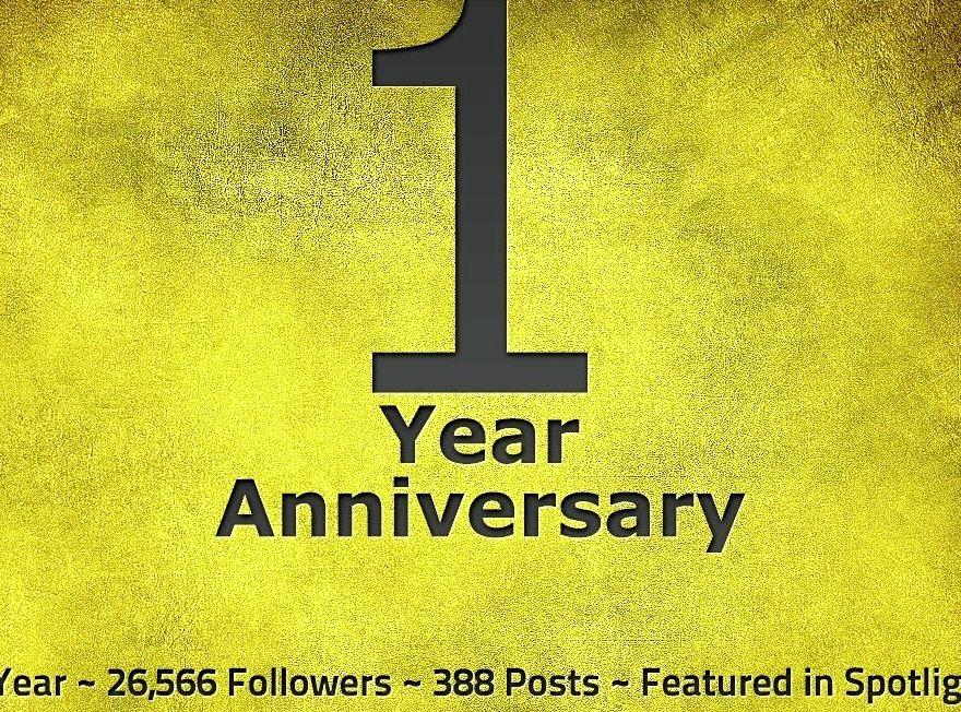 Birthday, Tumblr, 1 Year, Blog, Anniversary